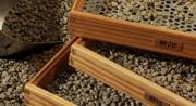 Измерение кофе для помола. Сортировка кофе происходит через специальные сита.