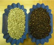 Как молоть зерна зеленого кофе. Зерна зеленого кофе могут быть различных сортов и разной спелости.
