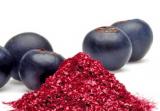 Область применения Супер-мельниц. Измельчение сушеных овощей, фруктов, ягод для изготовления джемов и пюре для детского питания.