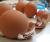Отходы пищевых и непищевых производств. Перемолотая скорлупа - хорошее дополнение в рацион домашних животных.