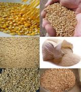Помол. На наших мельницах можно осуществит помол любого зерна.
